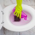 What Are the Dangers of Toilet Bowl Cleaner?