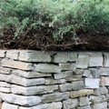 How to Fix or Repair Stone Retaining Walls