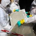 How to Spot Asbestos