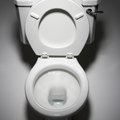 How to Repair a Porcelain Toilet Crack