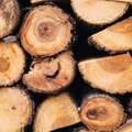 How to Dry Firewood Quickly