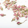 How to Make Your Real Roses Last Forever