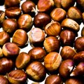 Are Buckeyes & Chestnuts the Same?