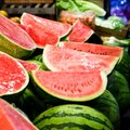 When and How to Plant Watermelons