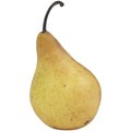 Why Are My Pears Very Hard & Not Ripening?