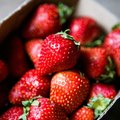 How to Grow Strawberry Plants From the Berry