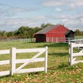 How to Level the Ground for a Rubbermaid Roughneck Storage Shed