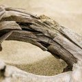 How to Make Furniture Out of Driftwood