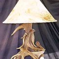 How to Make a Deer Antler Lamp