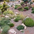 How to Landscape a Yard With Rocks & Gravel