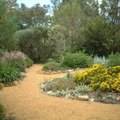 How to Dye Mulch With Spray on Color