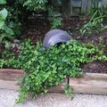 Low-Maintenance Landscaping Ideas for the Backyard