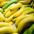 How to Grow Banana Trees in Texas