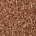 Side Effects of Buckwheat Pillows