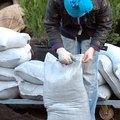 Harmful Bacteria in Soil