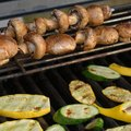 How to Fix an Electronic Ignition on a Char-Broil Grill