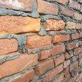 What Are the Causes of White Mold on Bricks?