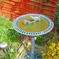 How to Repaint a Bird Bath