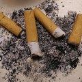 Smoke Odor Removal Secrets