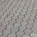 How to Remove Mold From Between Pavers