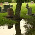 How to Clean a Black Granite Headstone
