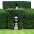 How to Kill Hedges