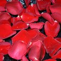 Things to Do With Rose Petals