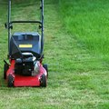 What Type of Oil Is Used in Push Lawn Mowers?