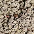 How to Build a Gravel Driveway Without Excavation