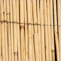 How Keep a Reed Fence From Weathering