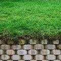 How to Get a Deep Green Grass