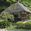 Building Traditional Japanese Houses