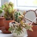Windowsill Extender for Plants