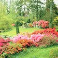 How to Landscape a Flower Bed