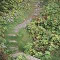 How to Build Natural Steps Up a Hill