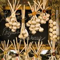 How Long Does It Take for Garlic to Grow & Mature?