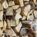 Types of Wood to Burn in a Fireplace