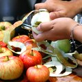 Who Invented the Apple Peeler?