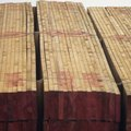 Different Grades of Pine Lumber