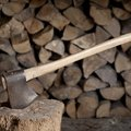 What Is the Difference Between a Jersey Axe & a Michigan Axe?