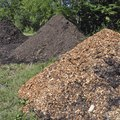 How to Treat Mulch for Termites
