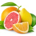 The Effect of Citric Acid on Metals