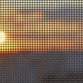 The History of Window Screens