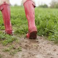How to Fix a Muddy Lawn