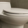 Salt Use in Clogged Toilets