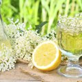 A Substitute for Elderflower Cordial
