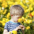 Safe Flowers for Children