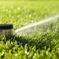 How to Shut Off a Sprinkler Head