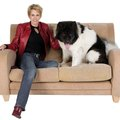 How to Clean a La-Z-Boy Microfiber Couch