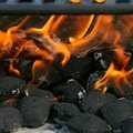 Dangers of Charcoal Briquettes